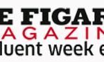 logo_figmag